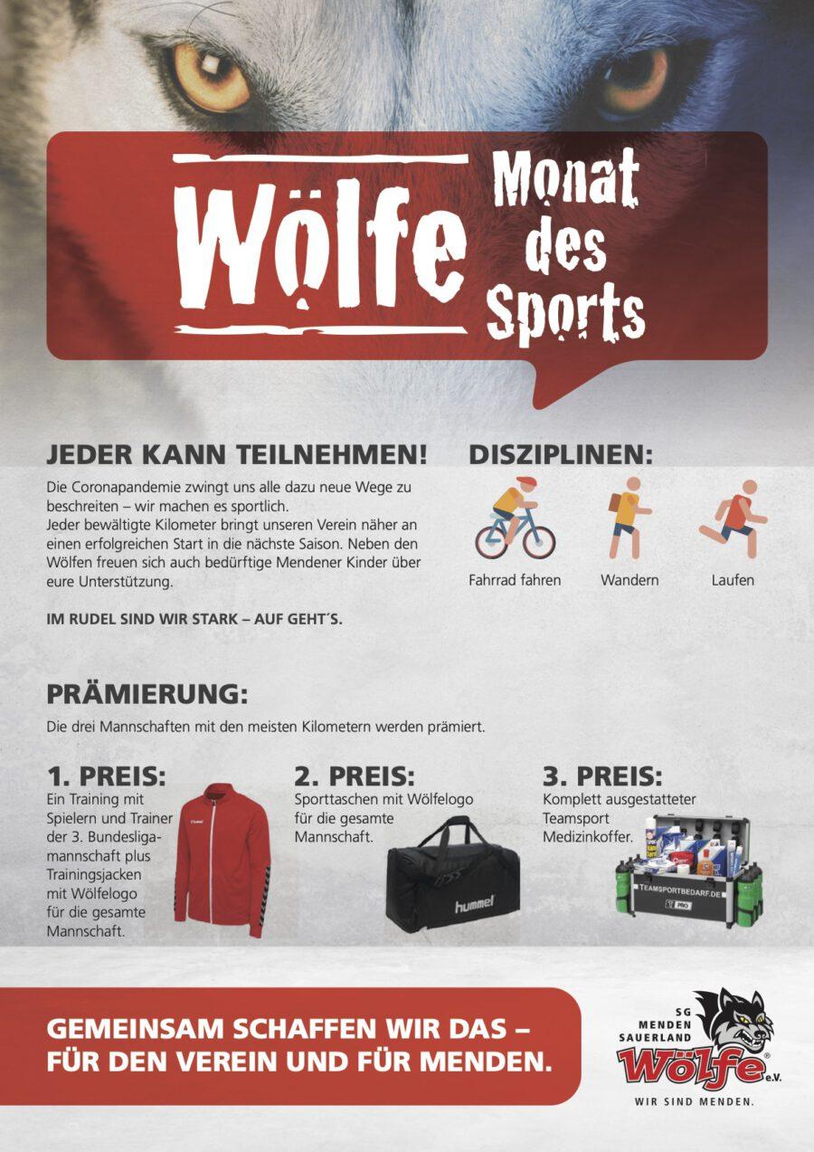 Flyer Monat des Sports